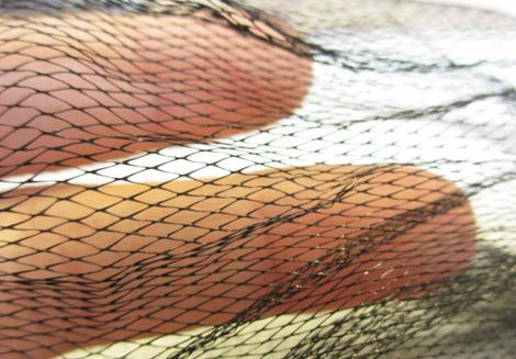 ネット 天糸の絹珠