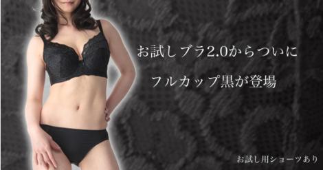 otameshi_bl_RuiG01.png